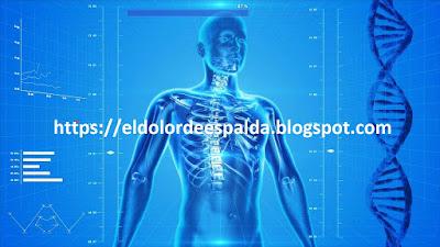 Para aliviar el dolor que provoca la inflamación del nervio ciático aconsejo estas posturas para estiramientos