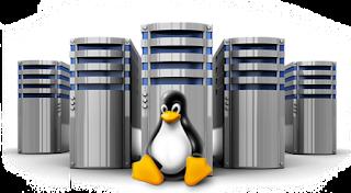 GNU/Linux: Sarg – Como configurar o gerador de relatórios do Squid – Parte 1