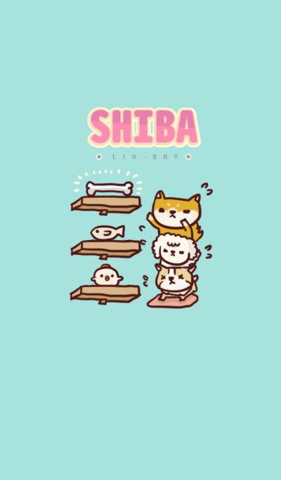 Shiba-Liubay