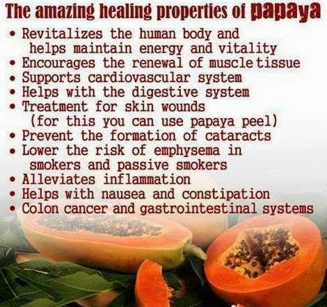 hover_share weight loss - the amazing healing properties of papaya