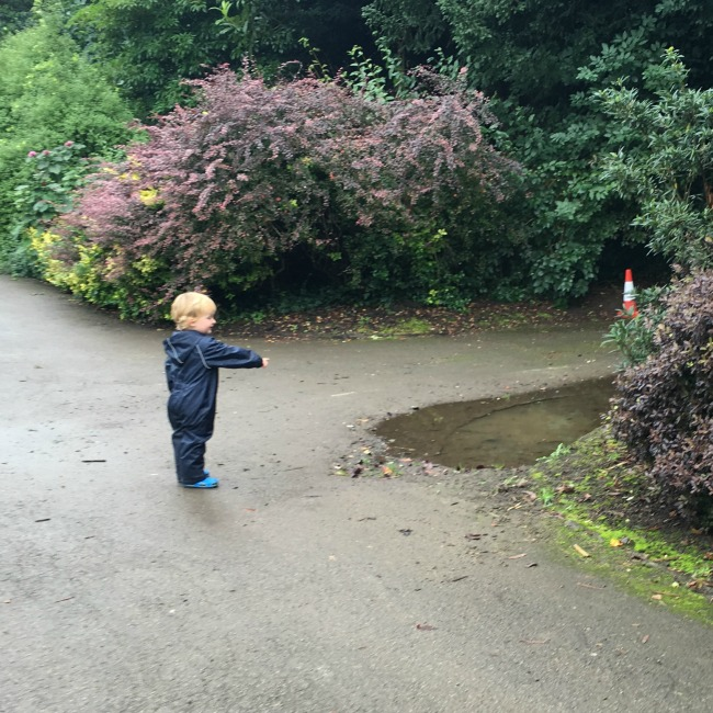 Tantrums-To-Smiles-toddler-pointing-at-a-big-puddle