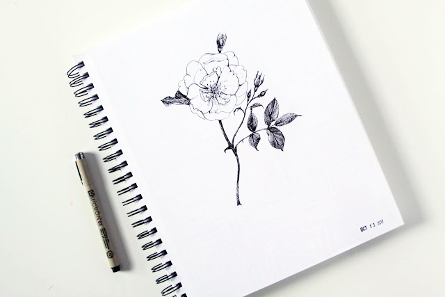 sketchbook, drawing, botanical sketches, roses, microns, Anne Butera, My Giant Strawberry