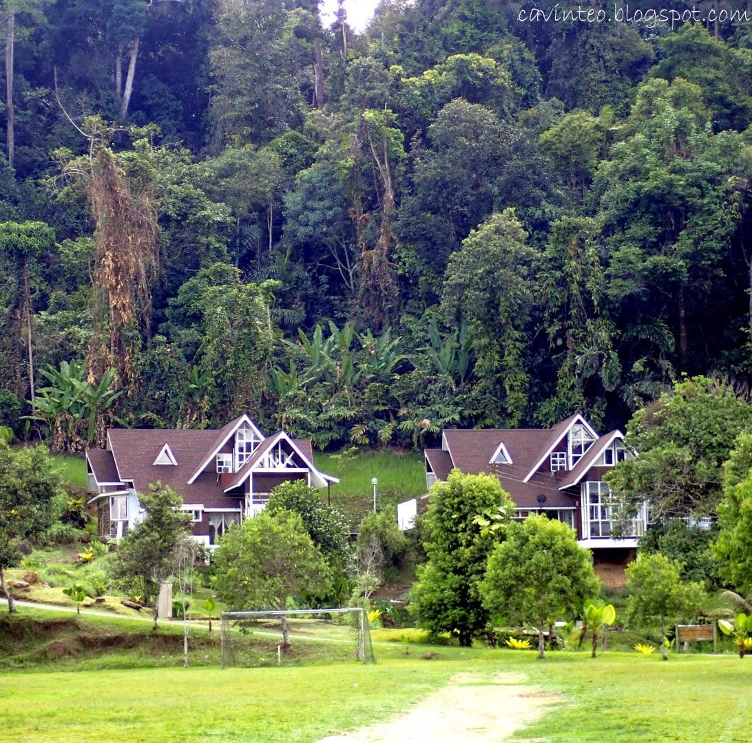 Borneo Island: Entree Kibbles: Poring Hot Spring & Nature Reserve Resort