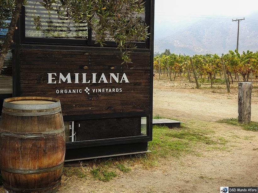 Vinícola Emiliana - Diário de Bordo Chile: 8 dias em Santiago e arredores