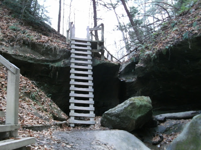 The Ladders Hiking Trail - Turkey Run State Park
