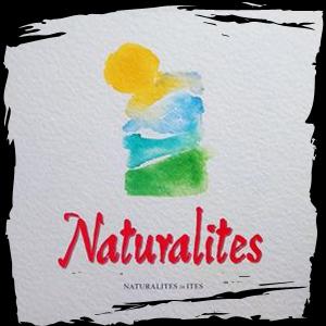 Compartilhandoreggae blogspot com: Natural Ites
