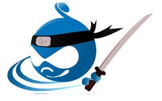 drupal web development services, drupal web development company