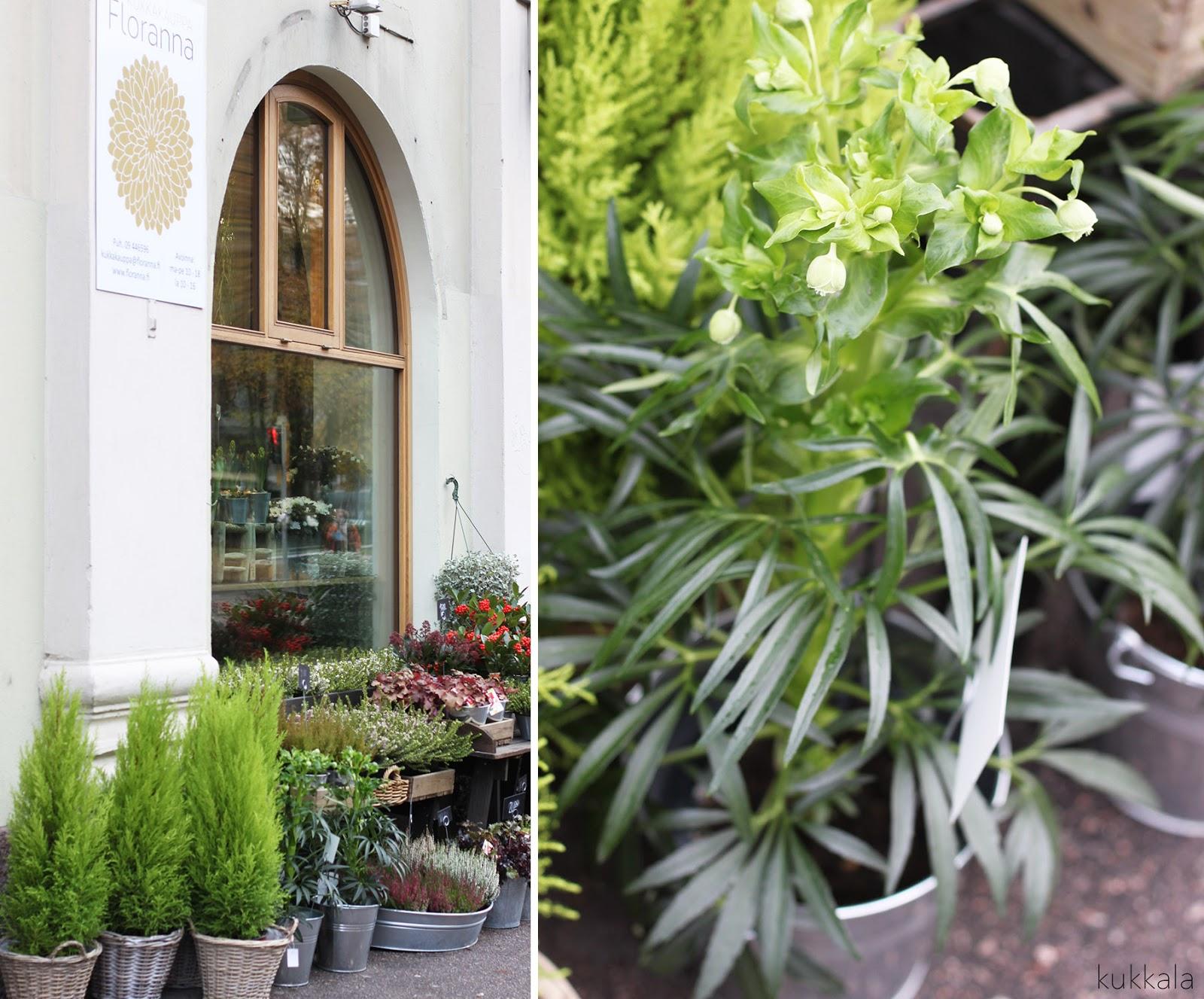 pretty nice d7e61 55071 Myymälässä: Floranna - kukkia Töölöstä | KUKKALA