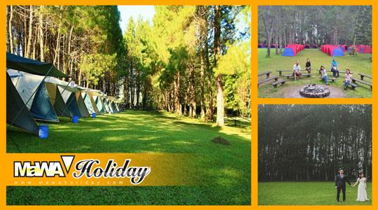 Paket Wisata Bandung Pine Forest Camp Lembang - Info Harga & Fasilitas