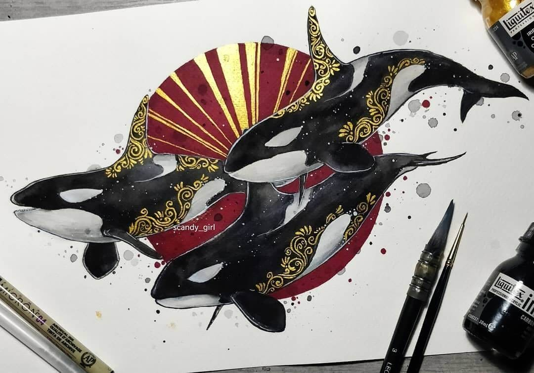 05-Orcas-Jonna-Hyttinen-Animals-Mixture-of-Drawings-and-Paintings-www-designstack-co