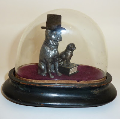 antique glass dome, globe de mariee, antique dog, cabinet of curiosities, victorian pugs