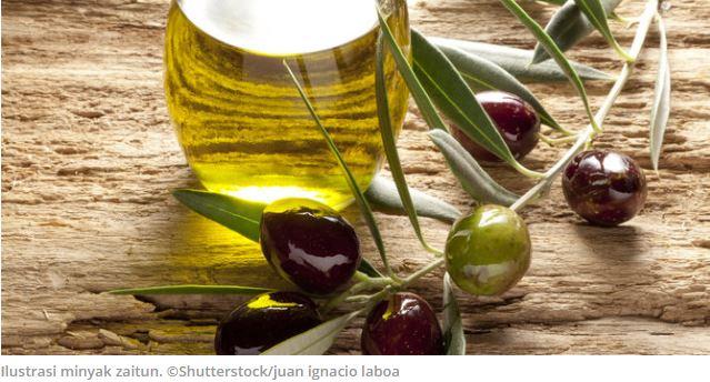Penelitian: setetes minyak zaitun ampuh cegah kanker otak
