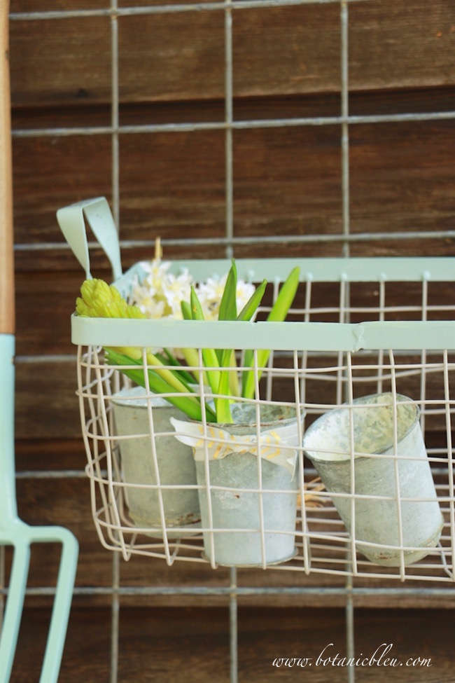 aqua-trimmed-wire-basket-in-potting-bench-area
