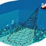 L'expression « pêche profonde » ou « pêche en eaux profondes » désigne toutes les formes de pêche exploitant les eaux profondes ou les grands fonds marins.