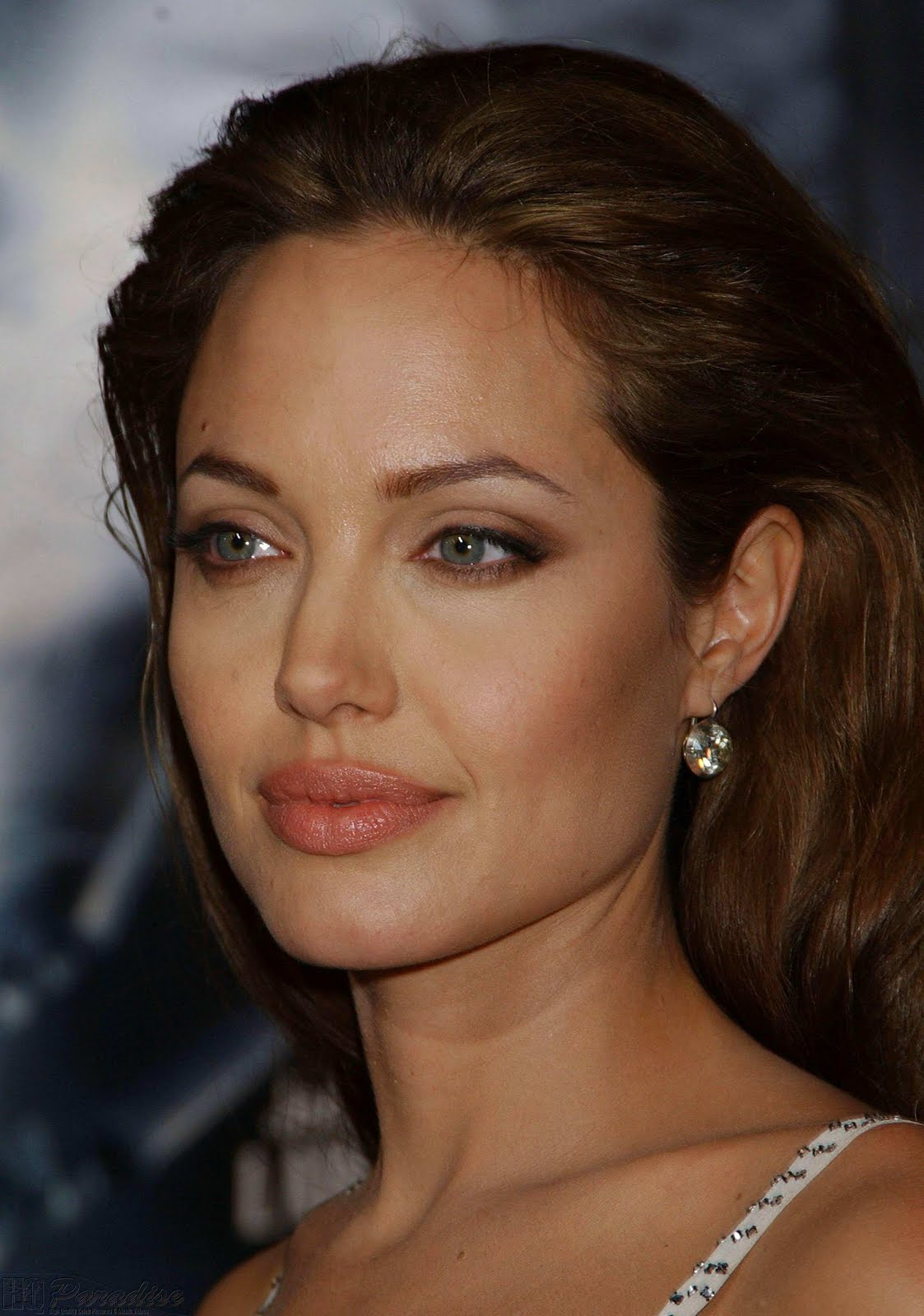 Hollywood Actress Angelina Jolie S Spicy Pictures Images