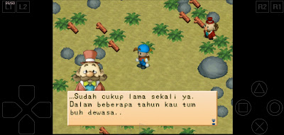 harvest moon back to nature Indonesia 2020