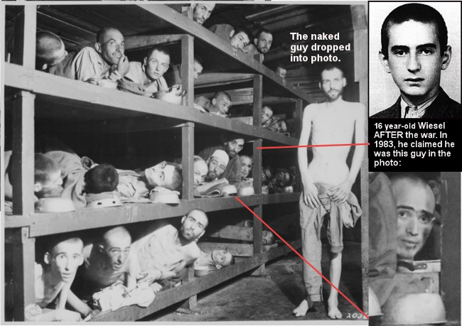 The dehumanization of the jews during the holocaust in the novel night by elie wiesel