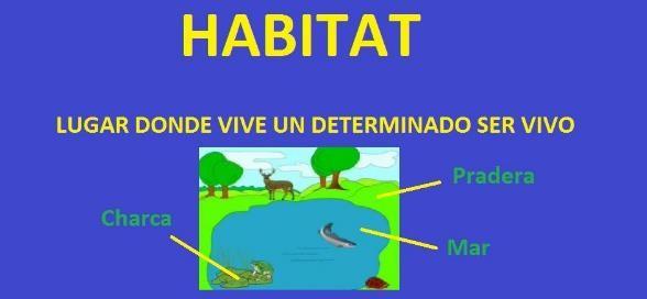 que es un habitat