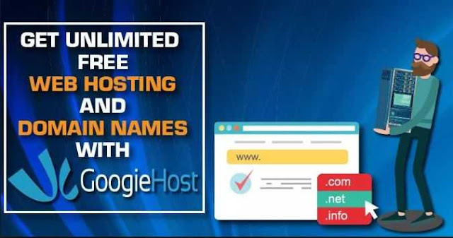 GoogieHost Review