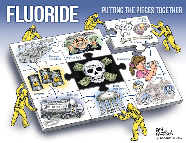 http://3.bp.blogspot.com/-45HEzf1cBR4/VeVMoYuyJoI/AAAAAAAABK8/xCJOQ8ncTWE/s1600/fluoride_puzzle_ben_garrison.jpg