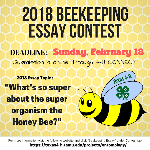 honey bee essay contest Explore more about the fascinating story of the hard working honey bee by participating in the north carolina 4-h beekeeping essay contest the essay provides a platform to creatively express your working knowledge and research of the craft of beekeeping.