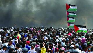 وكالة: المجتمع الدولي يعمل علي وقف الجرائم الإسرائيلية ضد الشعب الفلسطيني
