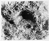 UFO Landing Site Photo at Gwinner, N.D. (pg 2) 10-26-1966