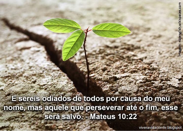 Mensagens E Palavras De Fé: Mensagens De Fé Da Palavra De Deus: Perseverar é Preciso