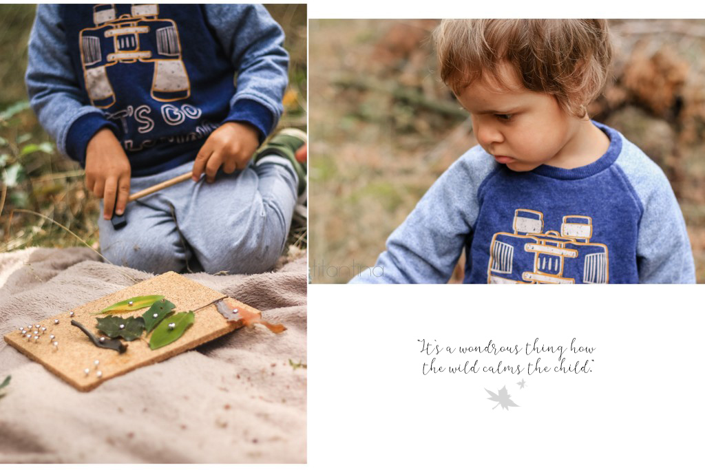 Wald mit Kindern erleben