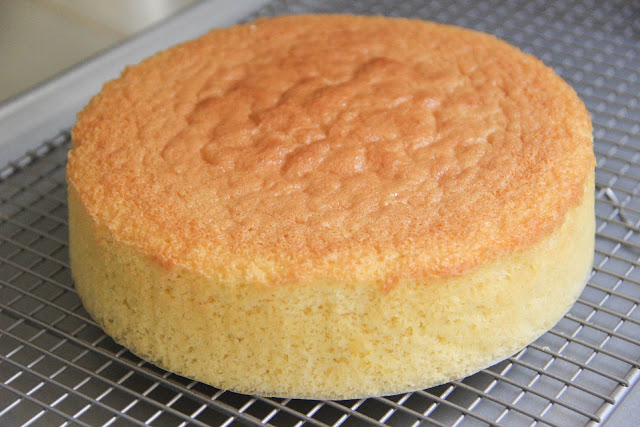 Basic Sponge Cake - italian sponge cake recipes from scratch
