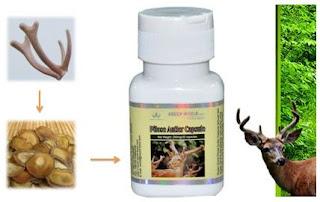 obat herbal yang aman untuk menyembuhkan kanker prostat