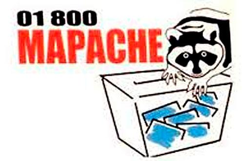 "Fernando Morales ve ""mapaches"" de EDOMEX"