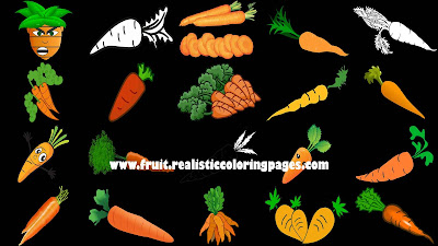 20 incredible carrot vegetables clipart