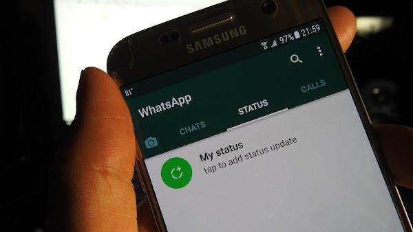 2 Cara Melihat Status Whatsapp Tanpa Ketahuan