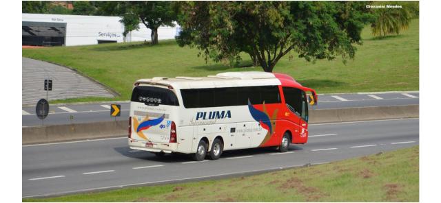 Após a decretação judicial, Pluma Conforto e Turismo segue operando