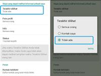 Cara Mudah Agar WhatsApp Tidak Terlihat Online