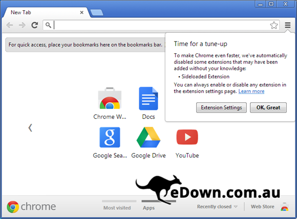 google chrome 25.0