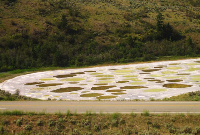 Spotted Lake, o Lago Manchado – Canadá