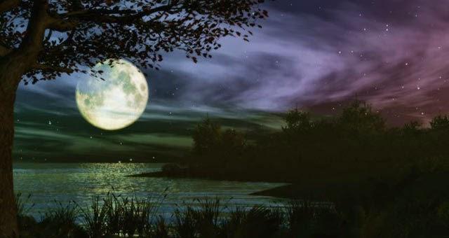 Amalan Amalan Di bulan Suci Ramadhan Atau Bulan Puasa