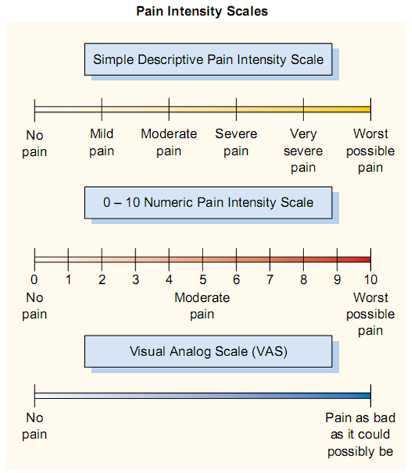 pain intensity scales.