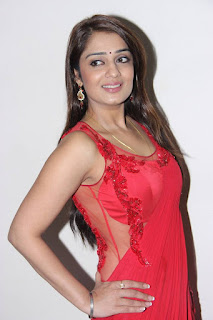 Actress Nikita Thukral Latest Pictures in Red Saree  0011