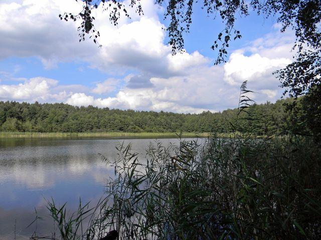 Jezioro Linie, jezioro Liny