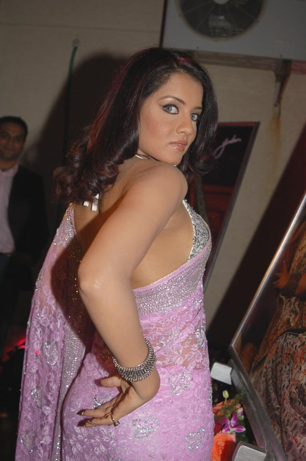 Celina Jaitly Indian Actress And Former Beauty Queen And -5516