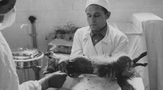 Vladimir Demikhov | 6 artikel Wikipedia yang Bikin Merinding