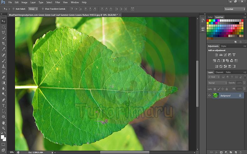 Cara Membuat Efek Tetesan Air di Photoshop - Tutorimaru's ...