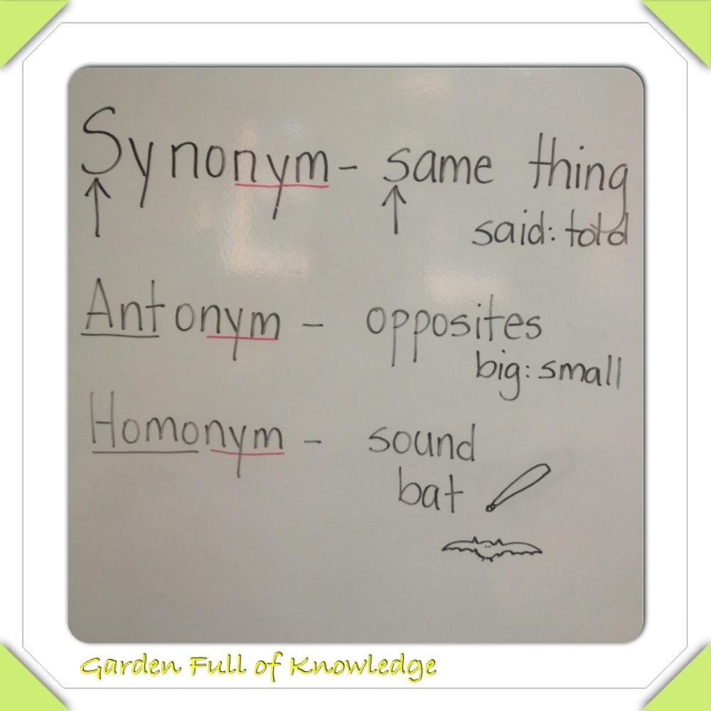 Garden Full of Knowledge: Synonyms, Antonyms, & Homonyms