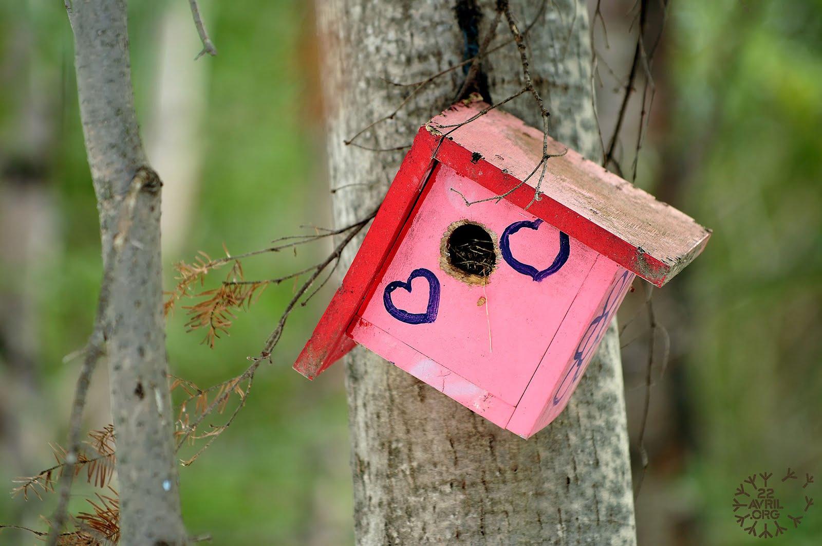 des nouvelles cabane pour oiseaux amoureux. Black Bedroom Furniture Sets. Home Design Ideas