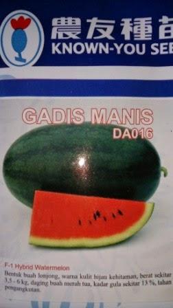 buah keras,tahan simpan,tahan pecah,Daging merah, tahan angkut, cepat panen,rasa manis,murah,inul, Gadis Manis, Semangka, Known You Seed