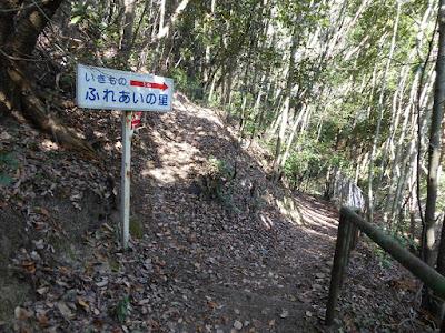 白旗池・交野山へと続くハイキングコース