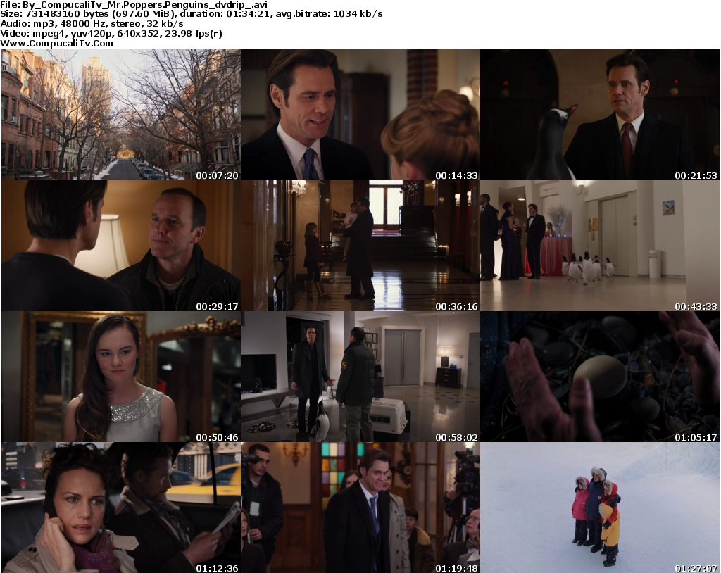 Mr Poppers Penguins 2011 [DVDRip] Español Latino Descargar